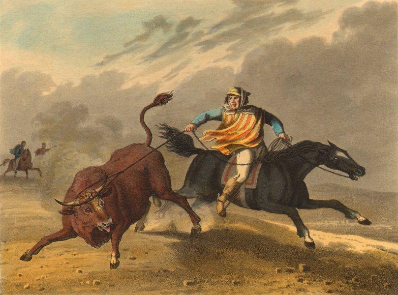 Gaucho cowboy